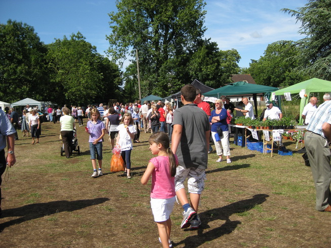 Frenchay Flower Show Stalls